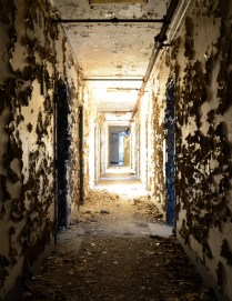 Hallway with large flecks of peeling yellow paint on walls