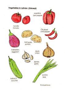 latvian veg 1