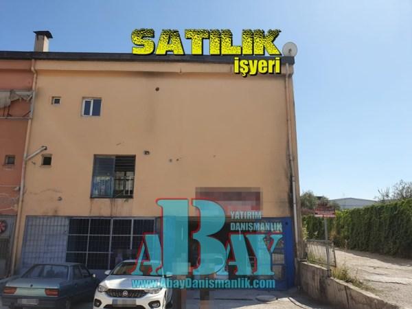 Sasmaz (2b)