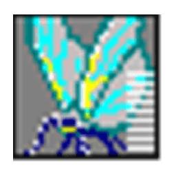 Logo Exif Pilot Crack