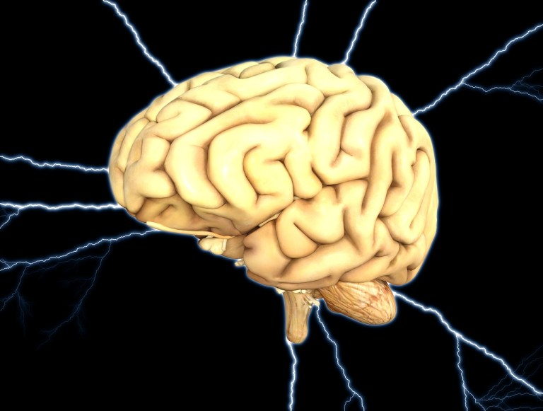 brain, energy, thought