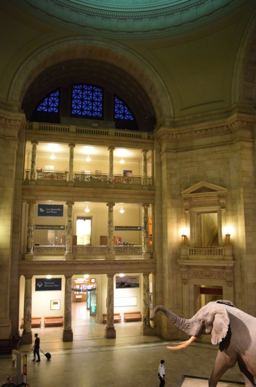 Smithsonian Museum of Natural History Inside