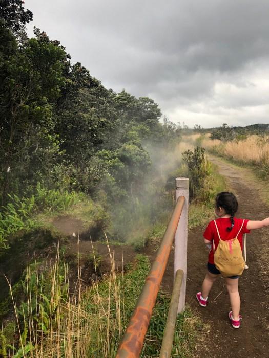 Hawaii Volcanoes National Park 6