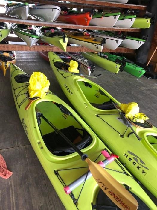 Kayak Cleanup Lake Union