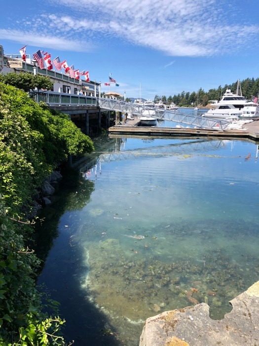 roche harbor clear blue water