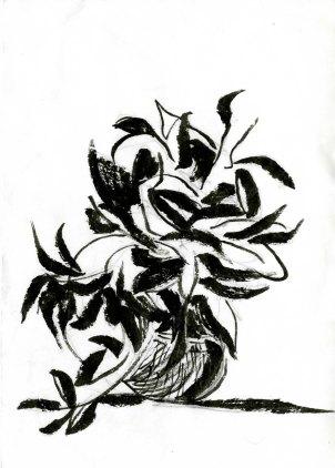 Arrangement, Pen and Ink, 2013
