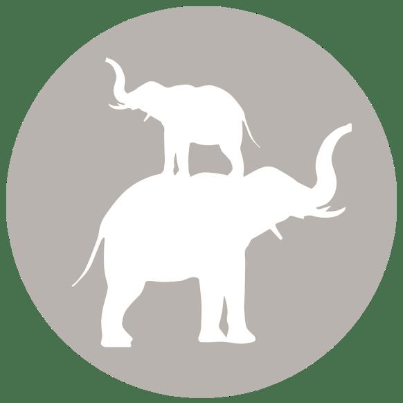 whiteelephantslogo_gray