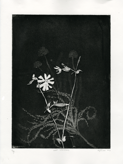 Weed Collection, Etching, 2015