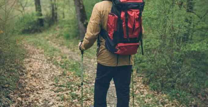 trekker nel bosco