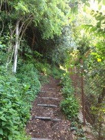 Nice trail eh?
