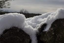 1-6-17-snow-24