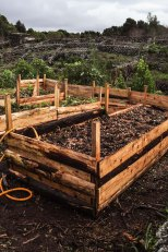 Raised bed mixed up with sawdust