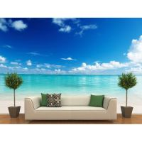 Beach Themed Wall Decor Decals - b Wall Decal