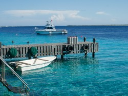 Klare karibische See