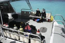 Tauchen im Bonaire National Marine Park