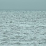 Child drowns in Torch Lake