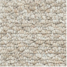 Berber Looped Carpet Style