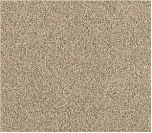 Plush Style Carpet
