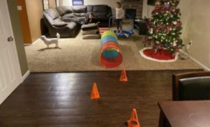 obstacle course indoors