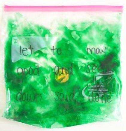 sensory bag sight word game