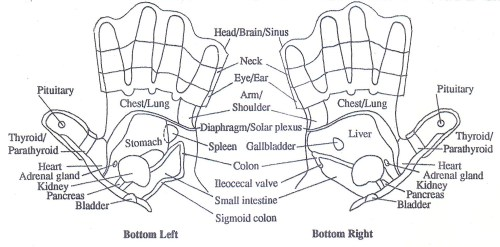 small resolution of hand chart