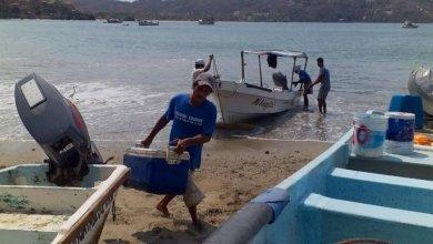 Photo of Pesca ribereña, de las pocas actividades que continúan a flote en esta crisis sanitaria
