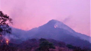 Photo of Por falta de apoyo y seguridad la sierra se está incendiando
