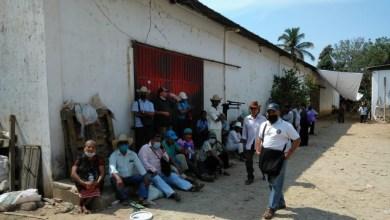 Photo of Piden a Semarnat parar tala de árboles en comunidad de Chilpancingo
