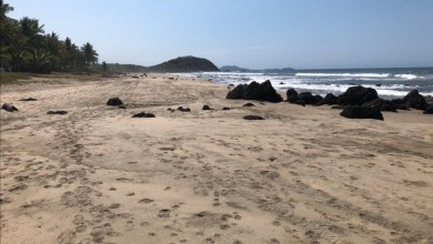 Photo of Hay posibilidades de abrir las playas de La Unión a partir del 15 de junio