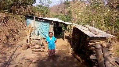 Photo of Pide ayuda para su hijo de 21 años discapacitado; viven en condiciones muy precarias