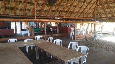 Photo of En Troncones se reactivará la actividad turística hasta el 15 de julio