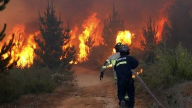 Photo of Guerrero: 189 incendios afectan más de 44 mil hectáreas