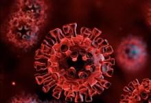 Photo of Zihuatanejo sumó 13 casos nuevos de Coronavirus este lunes