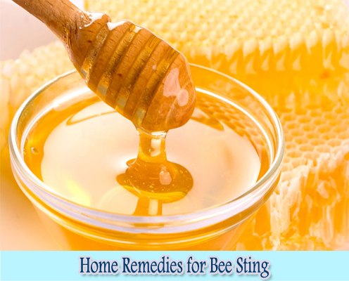 Honey : Home Remedies for Bee Sting
