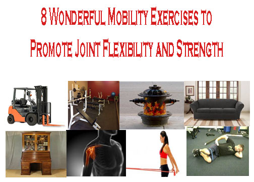 Mobility Exercises