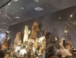 グルメ | タン | 高品質で安いネイルサロンABCネイル 大宮店