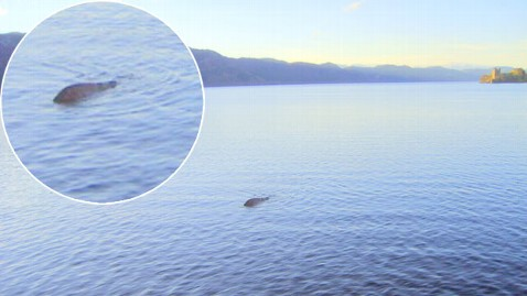 ht loch ness creature inset nt 120814 wblog Scottish Sailor Claims To Have Best Picture Yet Of Loch Ness Monster