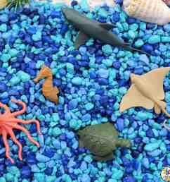 Ocean Animal Sensory Bin: Sensory Play Activity for Kids [ 2560 x 2560 Pixel ]