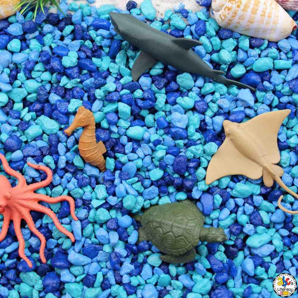 medium resolution of Ocean Animal Sensory Bin: Sensory Play Activity for Kids