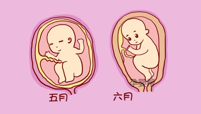 حركة الجنين في الشهر السابع قوية للحامل ودلالاتها بالتفصيل