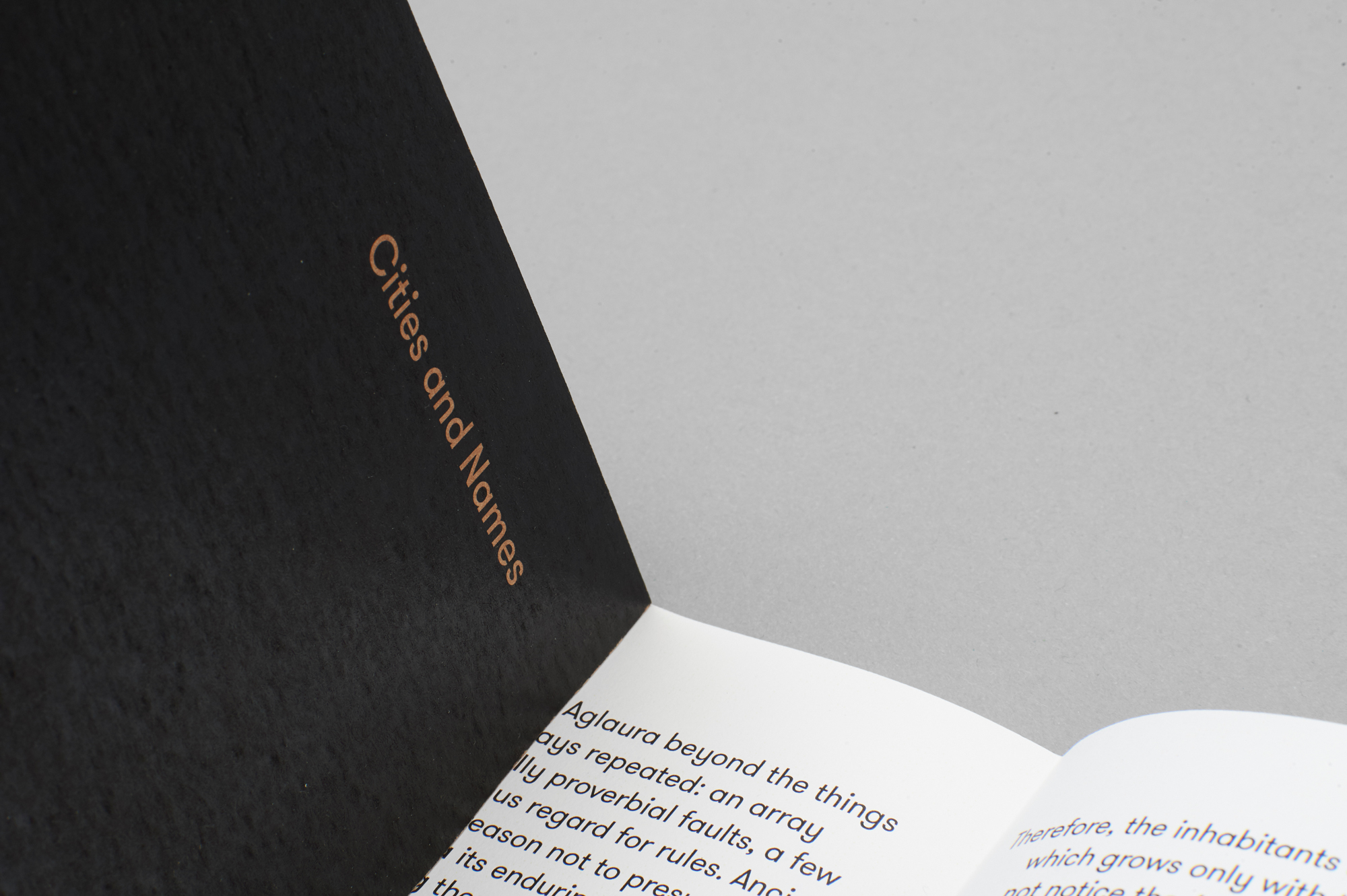 Elegant Editorial Design Project: Cities and Names