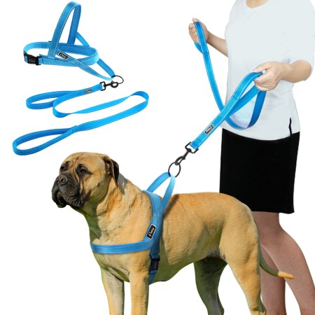 Nylon Dog Harness with Leash