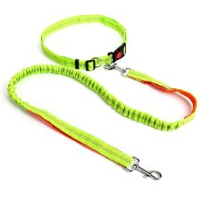Hands Free Dog Leash and Collar Set