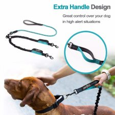 Bungee Elastic Two Dogs Leash
