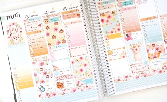 Plan With Me With Hello Petite Paper Erin Condren Life