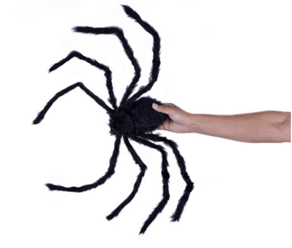 giant furry spider