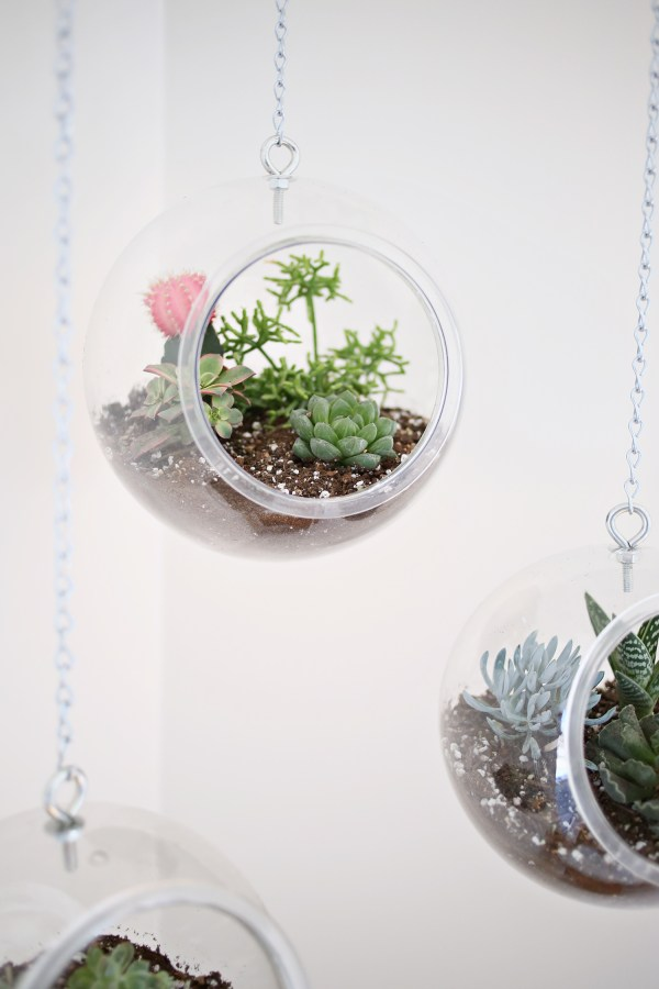 Hanging Fishbowl Planter