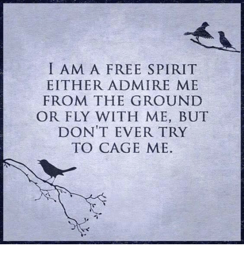 I am a free spirit, photo from: http://www.mesmerizingquotes.com17802442