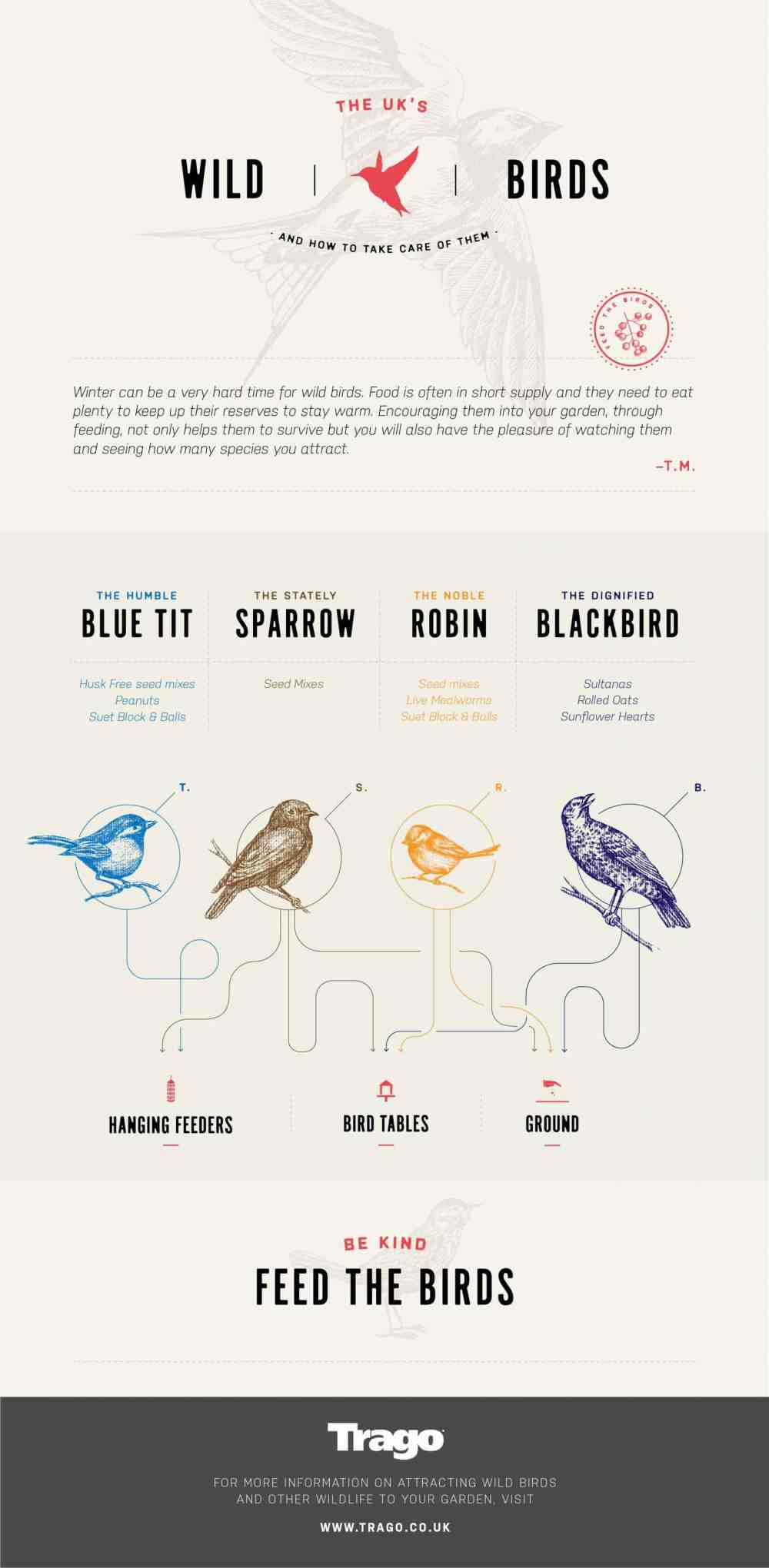 medium resolution of how to take care of wild birds