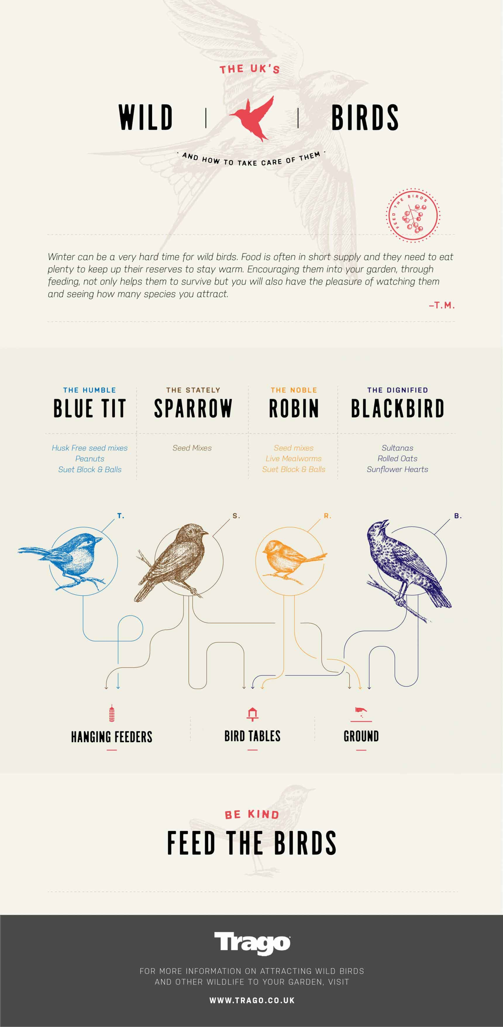 hight resolution of how to take care of wild birds